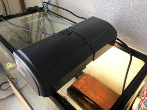 クサガメ飼育 紫外線ライト